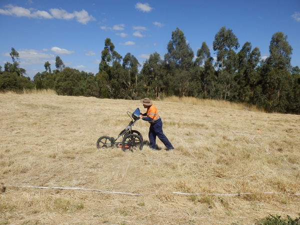 The GPR system being pushed across the site during the investigation.